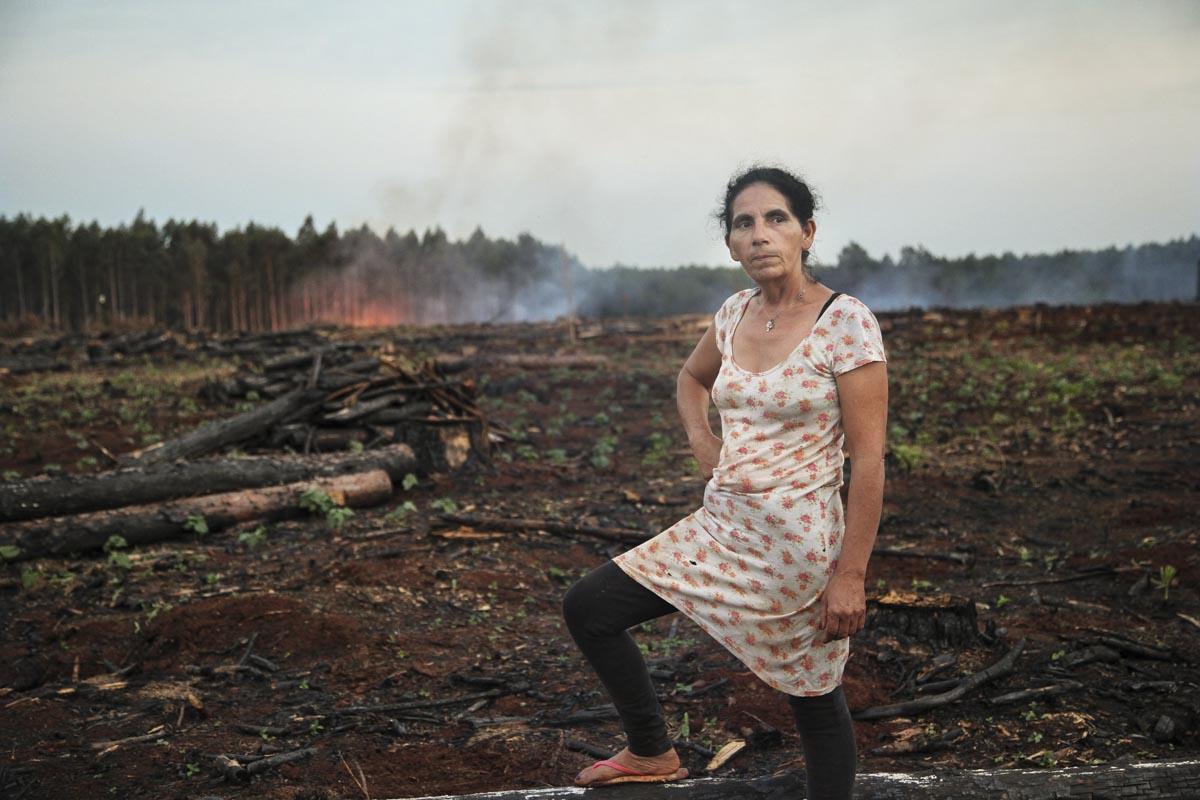 Productores Independientes de Piray (PIP) se organizaron para frenar el monocultivo de pinos y a la empresa Alto Paraná. Resistiendo en el territorio y logrando la expropiación de tierras a la multinacional.