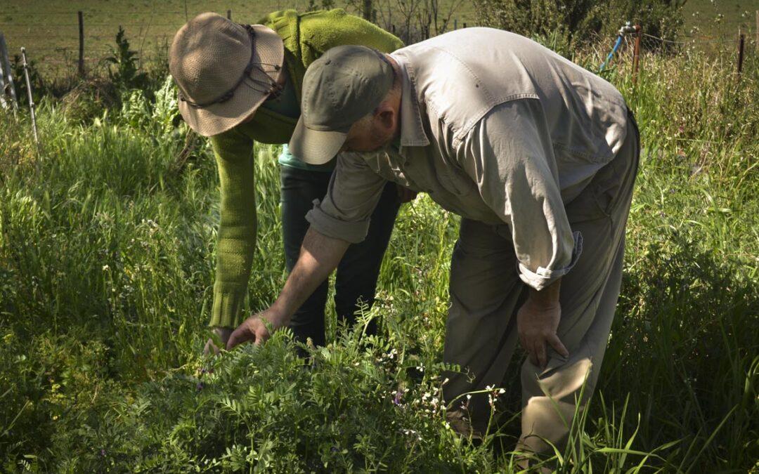 Guaminí: 5000 hectáreas de agroecología