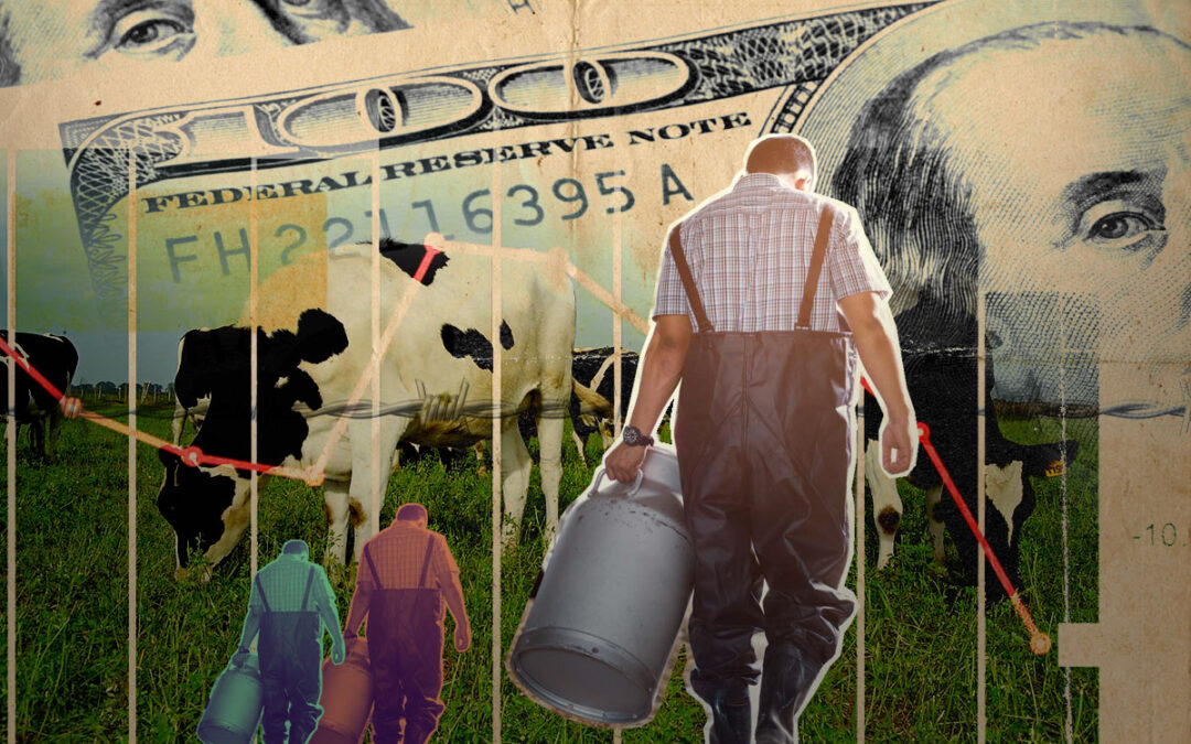 Menos consumo de leche, más problemas para tamberos
