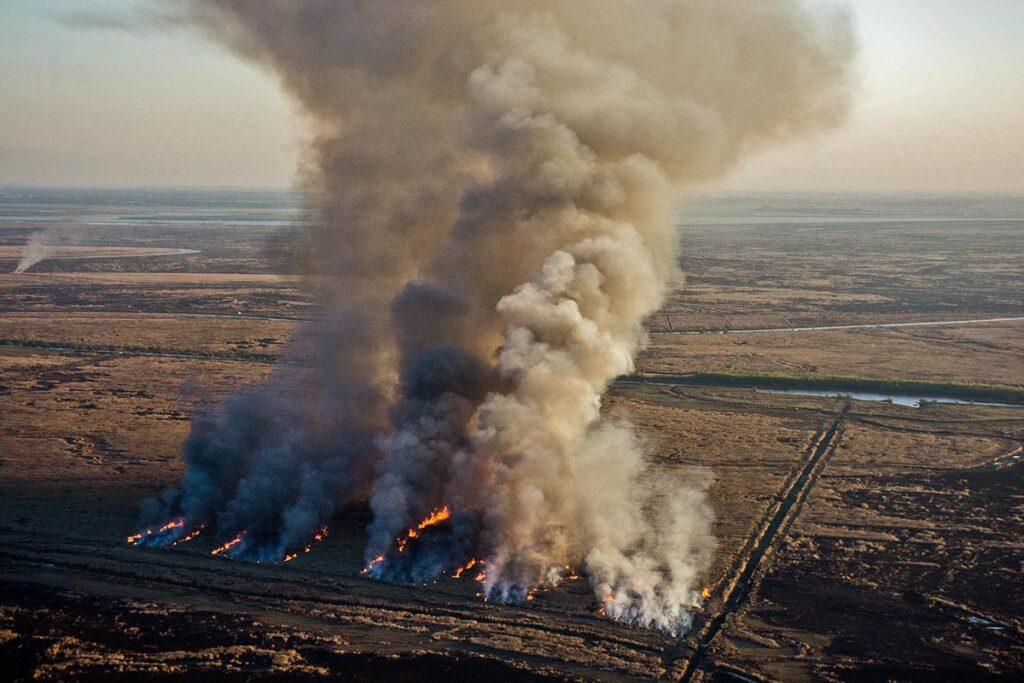 Emisiones de CO2 por los incendios en el Delta del Paraná.