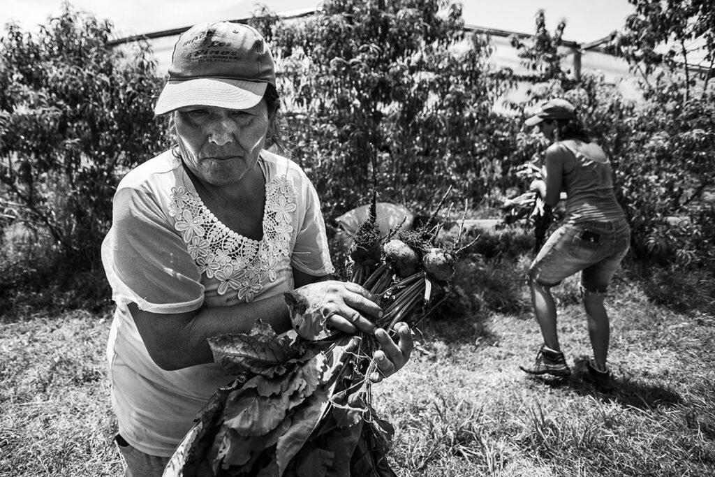 Ley de Agricultura Familiar: 6 años a la espera de la reglamentación