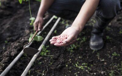Preguntas para una agricultura con agricultores