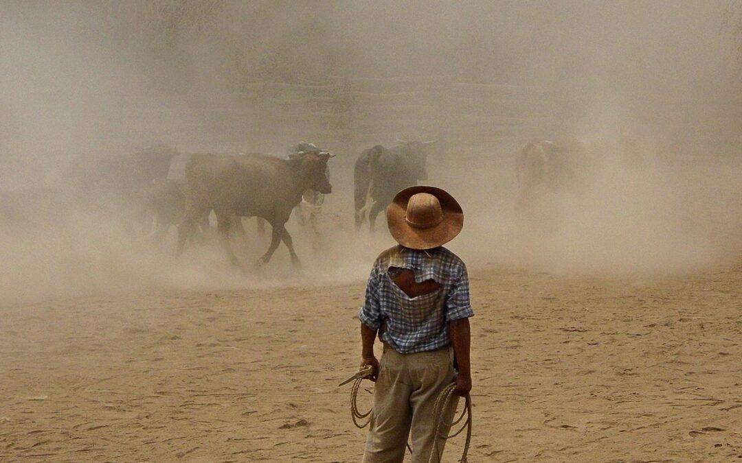 Chaco salteño: la desigualdad se agudiza con la pandemia