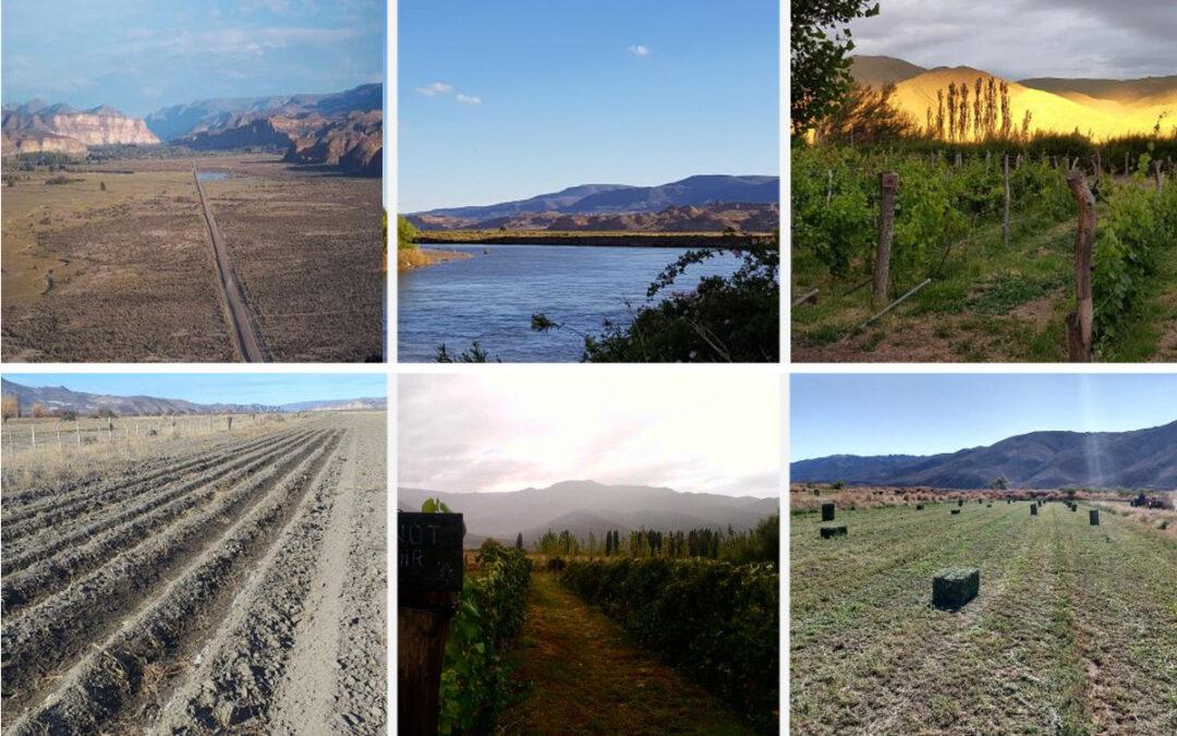 Desde Chubut: «La producción de la meseta podría abastecer con alimentos desde la Cordillera al mar»
