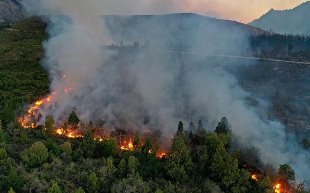 Incendios en El Bolsón: 8.500 hectáreas bajo fuego y crisis en las zonas rurales