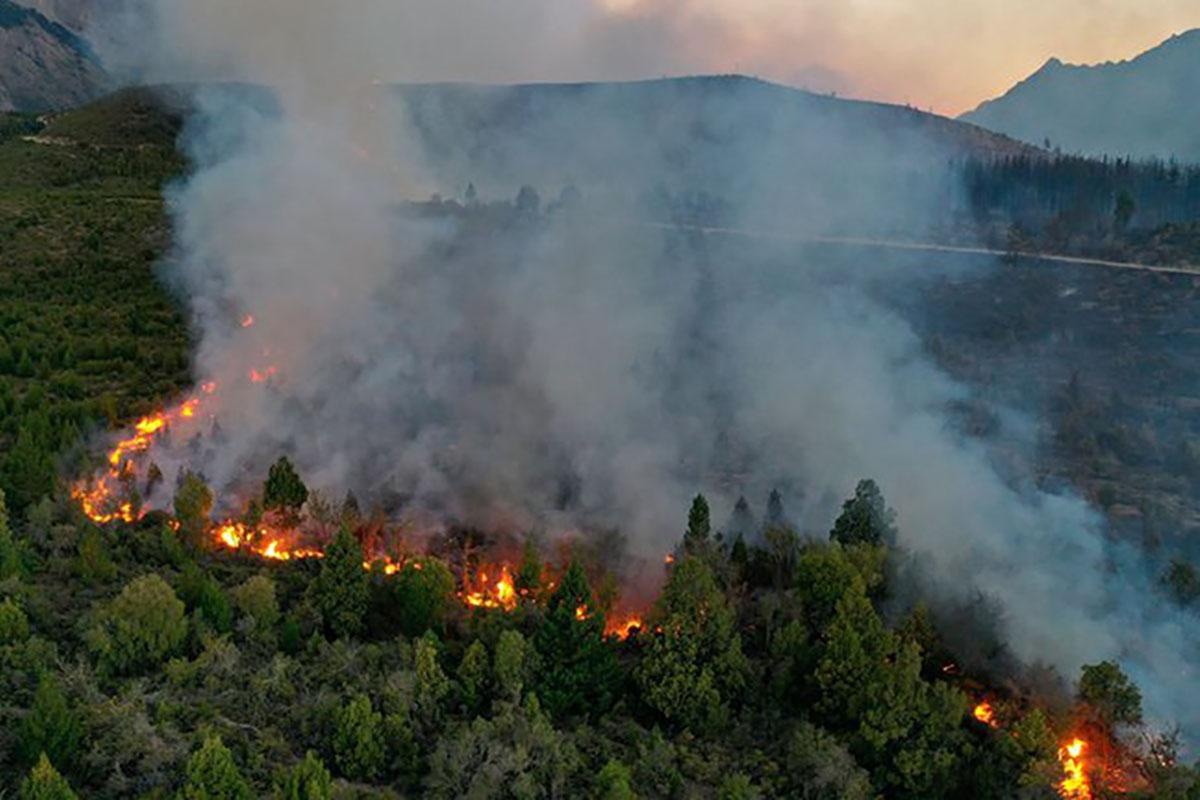 Casi 10 mil hectáreas de bosque fueron arrasadas por un feroz incendio en la zona de Cuesta del Ternero, cerca de El Bolsón