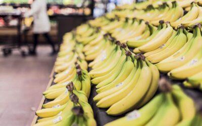 La Federación Agraria denuncia sobreprecios en la cadena de comercialización