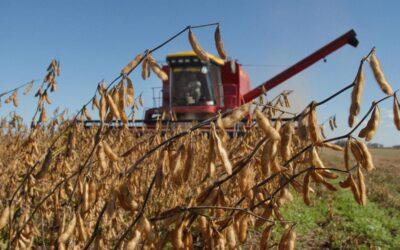 El impacto del agronegocio en la emisión de GEI según el Informe sobre Cambio Climático 2020