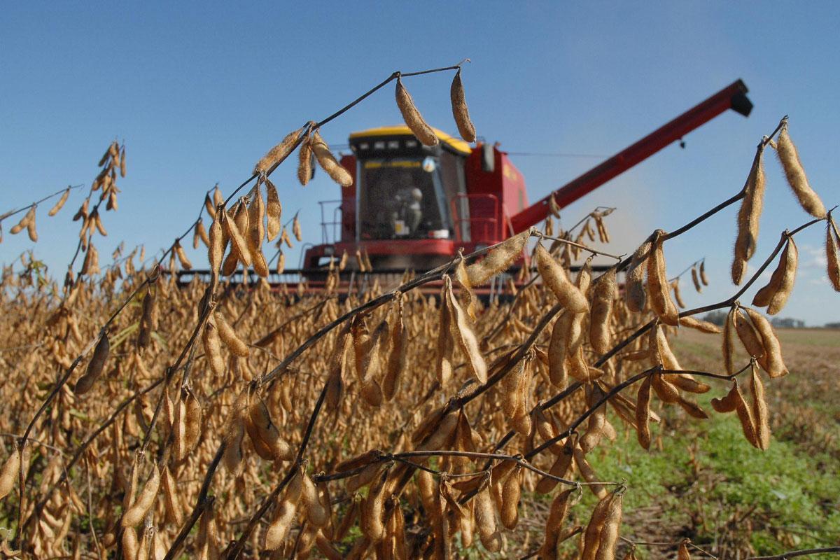 impacto-del-agronegocio-en-la-emisión de-gei