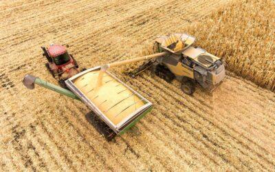 Precios de los alimentos: las propuestas de campesinos y cooperativas