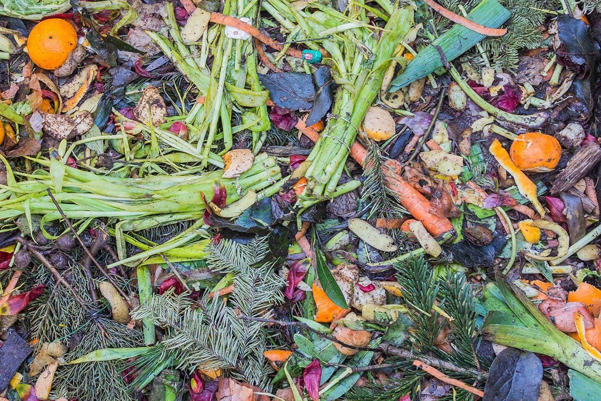 ONU. El 17 por ciento de los alimentos termina en la basura