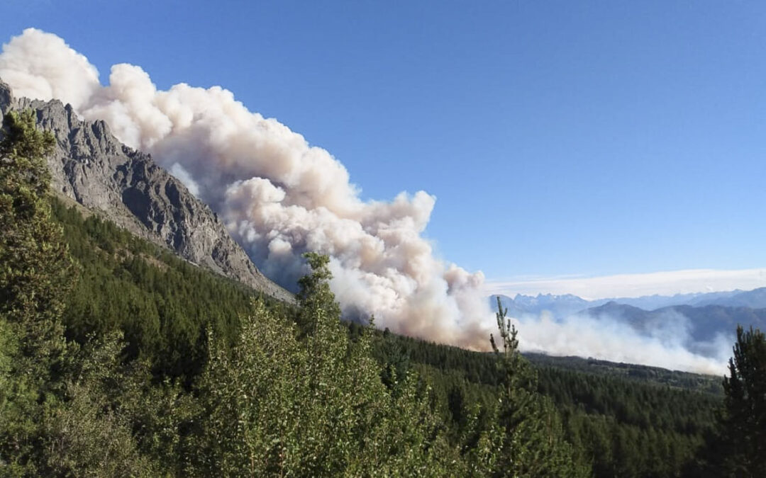 """Incendios en Chubut: """"Estaban dadas las condiciones para estos incendios catastróficos o explosivos"""""""