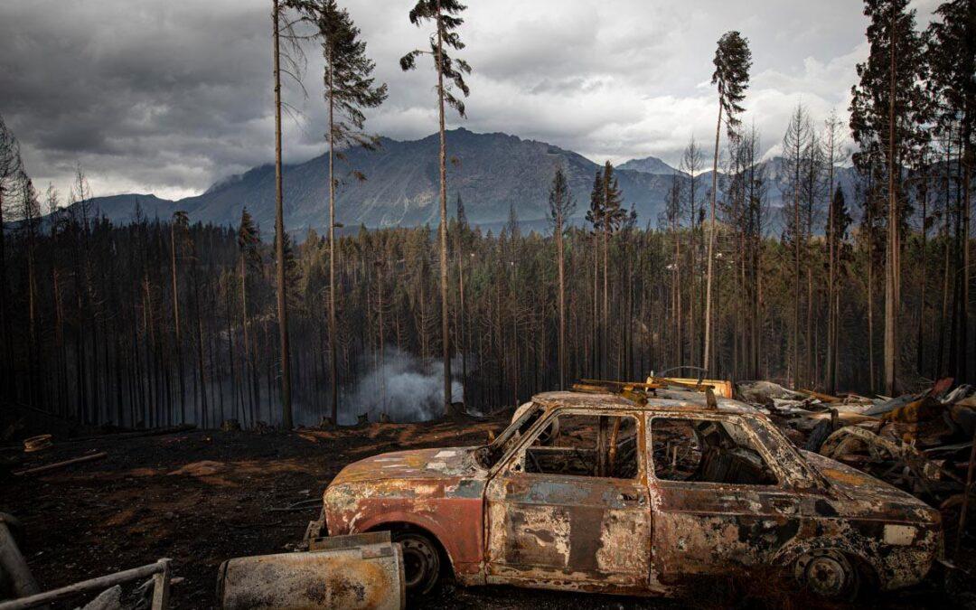 Incendios en Chubut: causas, responsables y resistencias