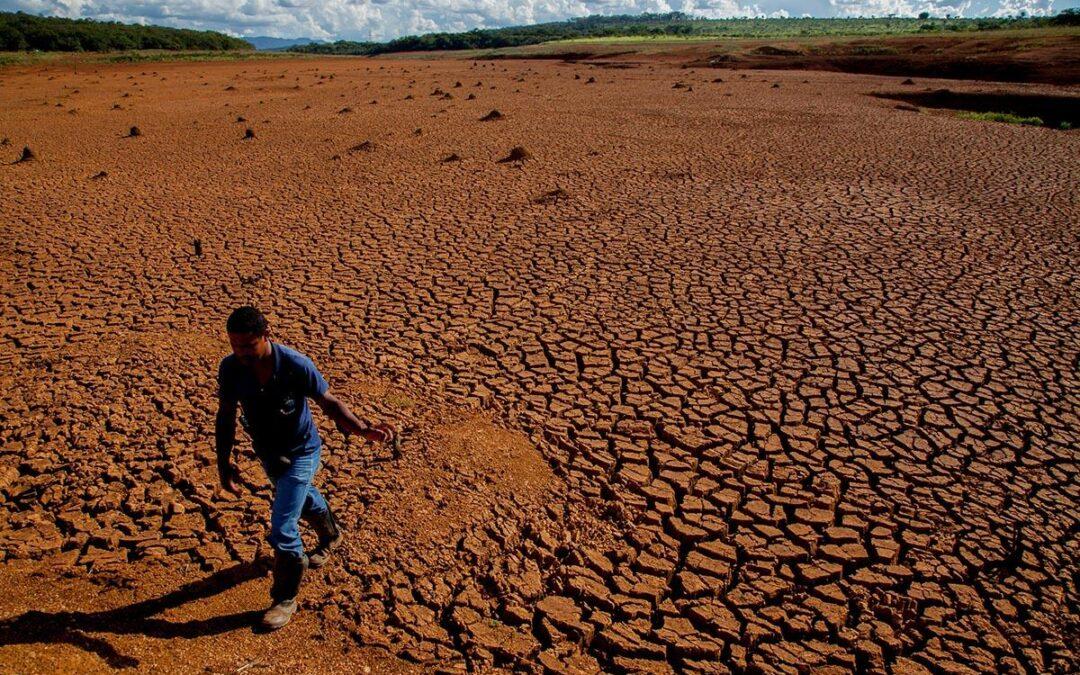 Informe de la FAO: 7 millones de personas por año pierden su alimentación por los desastres naturales