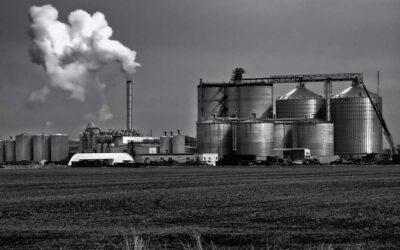 Biocombustibles: los legisladores bailan al ritmo de los sectores empresarios