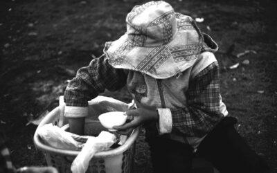 """""""La Cumbre sobre los Sistemas Alimentarios está sesgada en soluciones de mercado"""""""