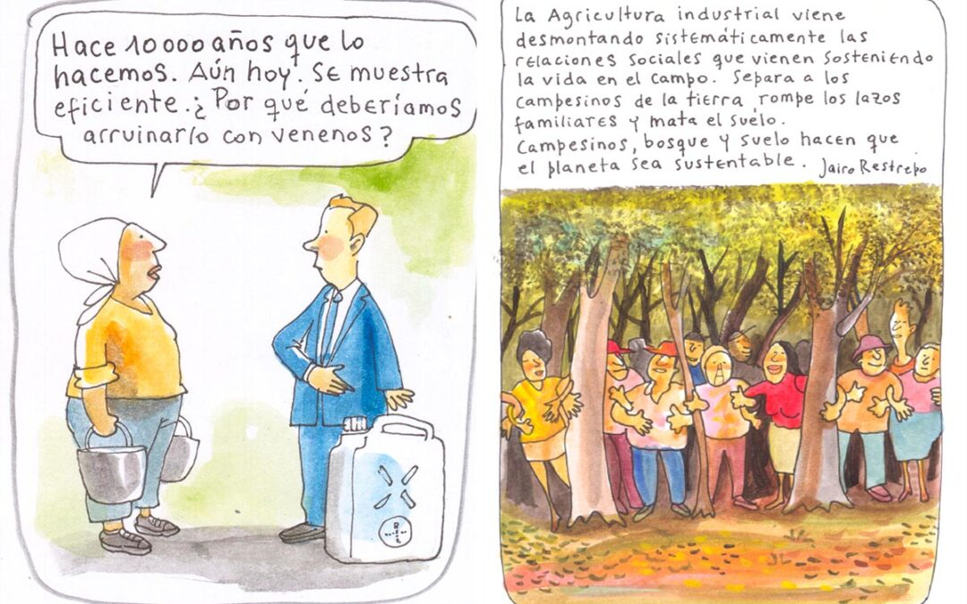 """""""La agricultura orgánica alimenta el suelo, promueve la vida, produce variedad"""""""