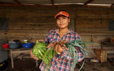 Producción agroecológica, orgánica o convencional: diferencias y similitudes en el campo argentino