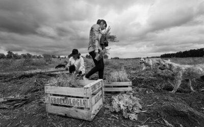 Una carta abierta al Gobierno para que se posicione a favor de la agroecología