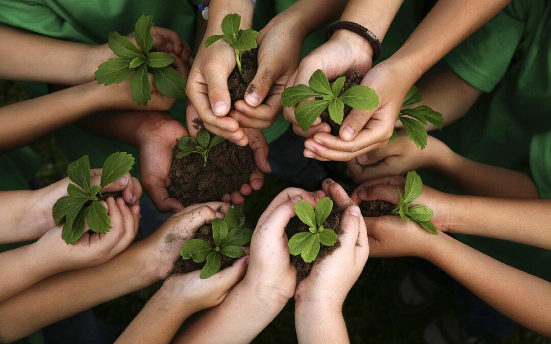 Educación Ambiental Integral para la defensa de la vida