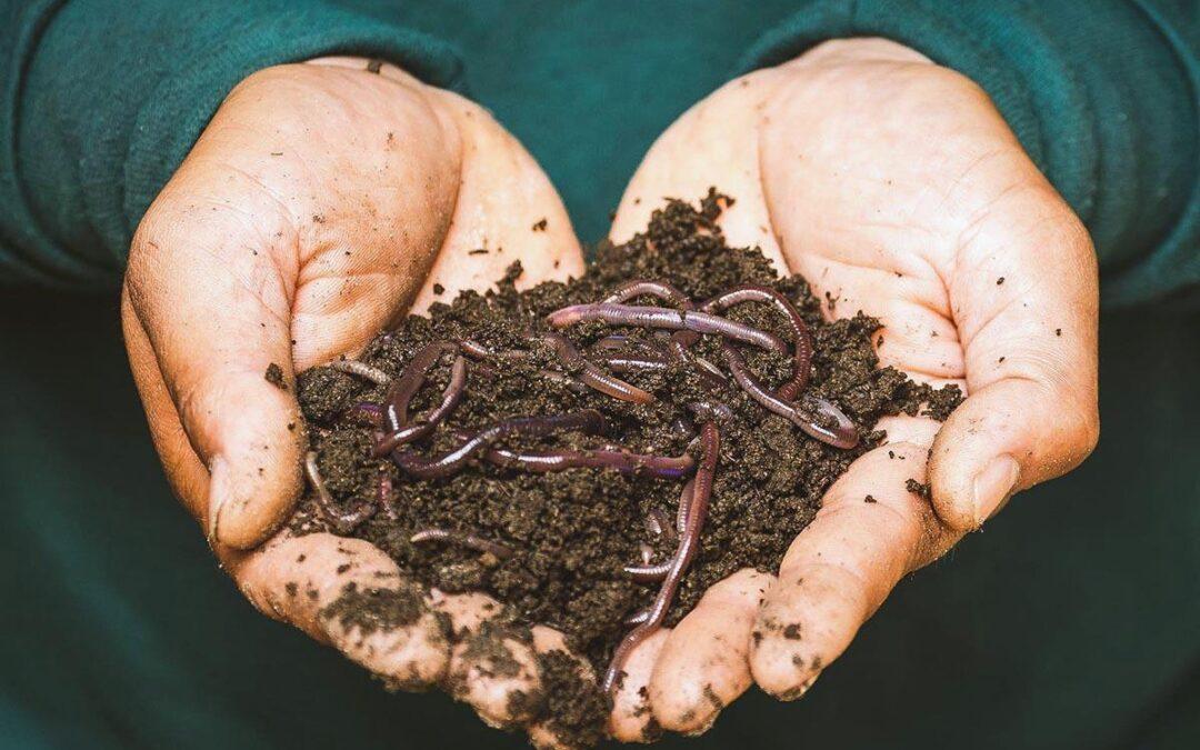 «Al compostar estamos devolviéndole suelo a la Tierra»