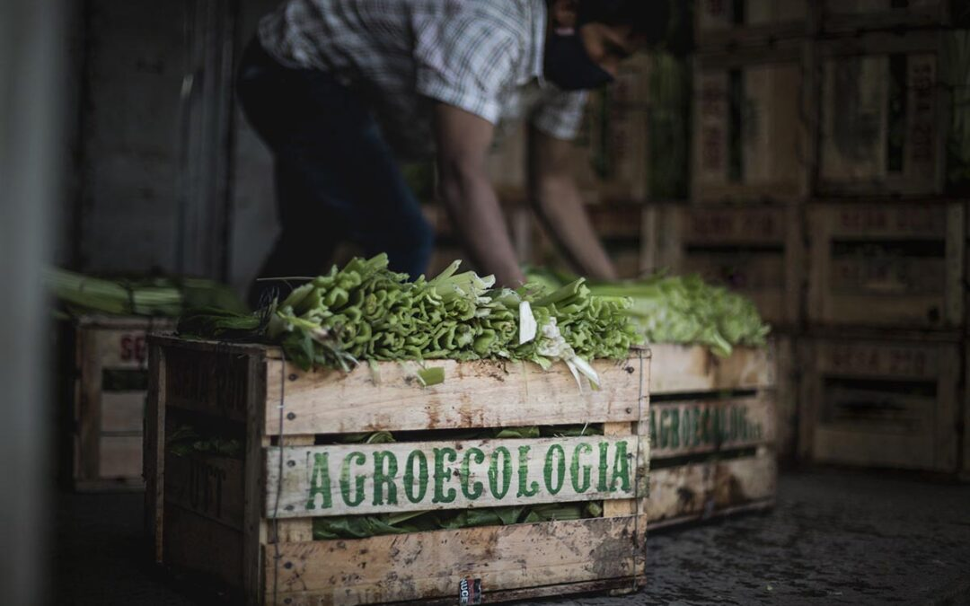 «Los alimentos no son una mercancía»