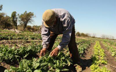 Se presentó el II Congreso de Agroecología en Chaco