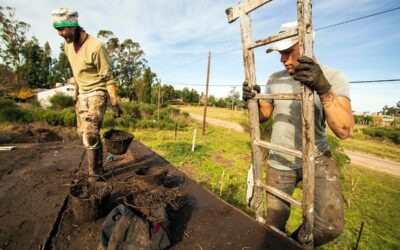 Bioconstrucción: manos a la tierra y acceso a la vivienda
