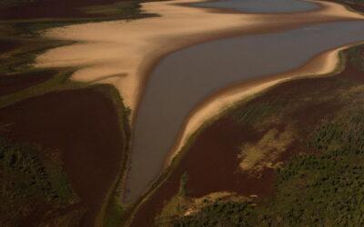 """Río Paraná: """"No es una bajante, no es una sequía. Es la deforestación"""""""