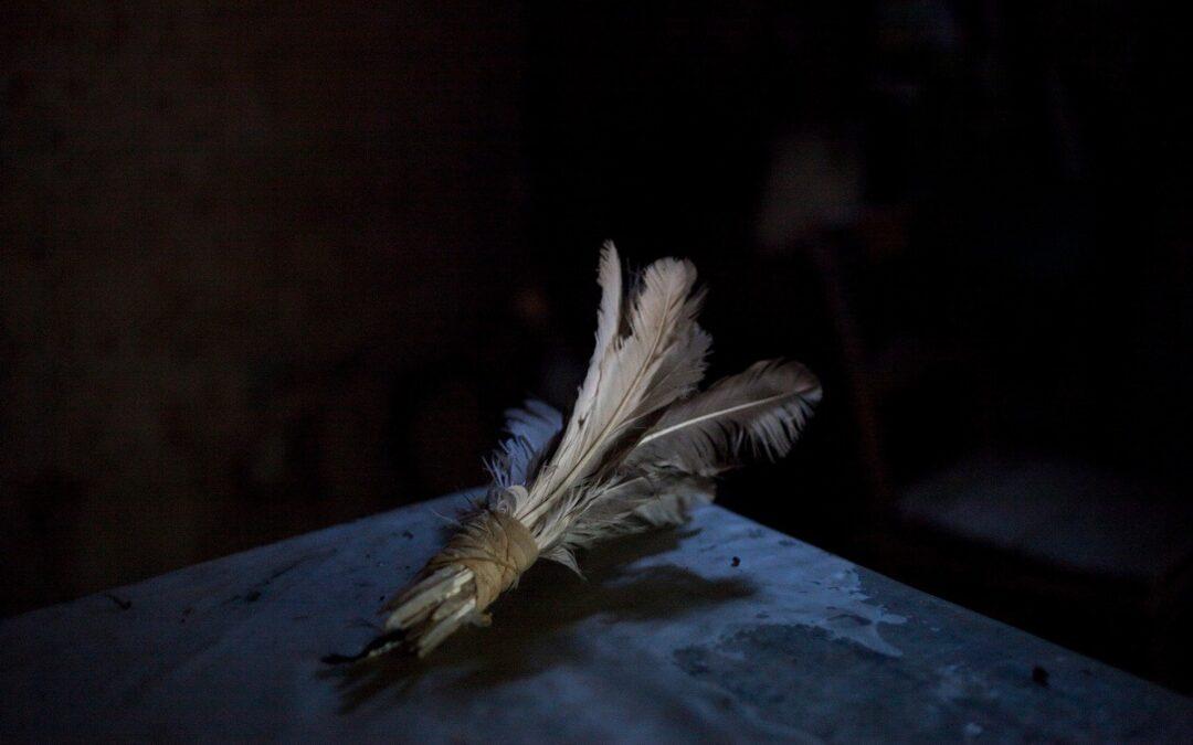 Camino de viento y piedra: el Qhapaq Ñan sigue vivo
