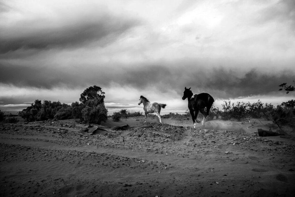 Los sismos que oculta Vaca Muerta