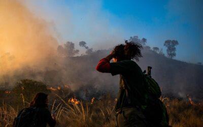 Los bosques nativos de Córdoba arden bajo el fuego del extractivismo