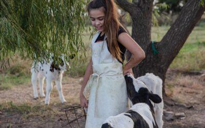 Precio de los alimentos: la leche aumentó 480% en cinco años