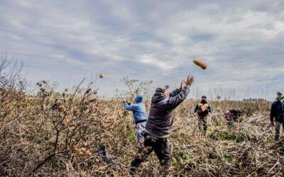 Saltar las barreras corporativas para transformar los sistemas alimentarios