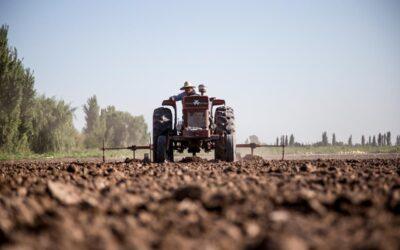 Argentina sostiene la voz del agronegocio en la Cumbre de los Sistemas Alimentarios